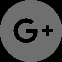 google_scholar_url